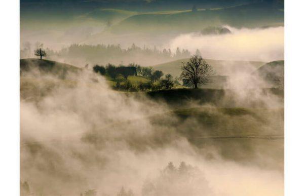 Фотообои Туманные луга