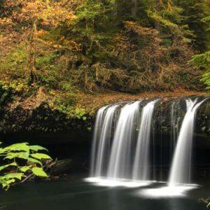Фотообои Осенний водопад