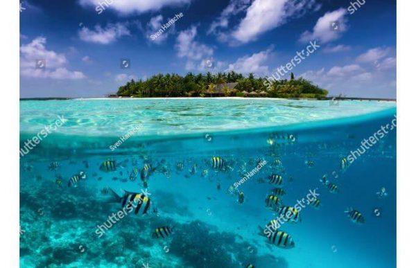 Фотообои Под водой и над водой