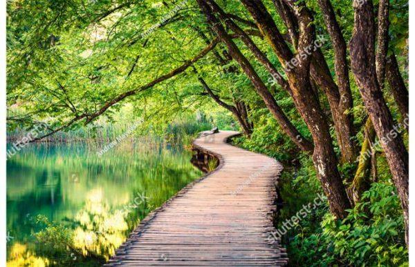 Фотообои Деревянная тропинка вдоль озера