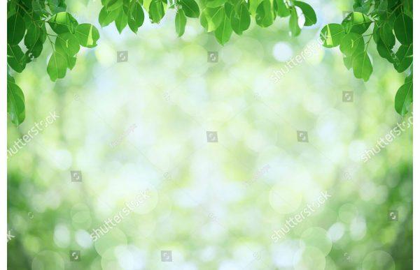 Фотообои Зелёная листва