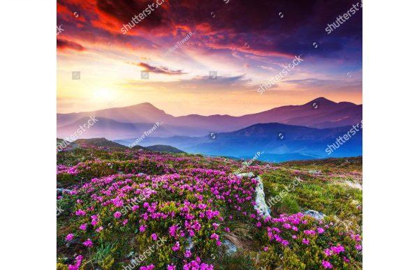 Фотообои Радужный закат